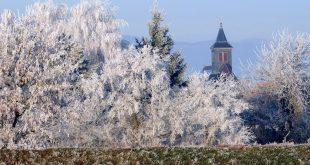 Que ver en Obernai