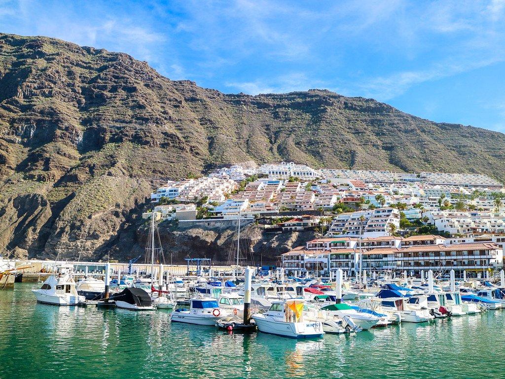 Excursiones para ver delfines y ballenas en Tenerife