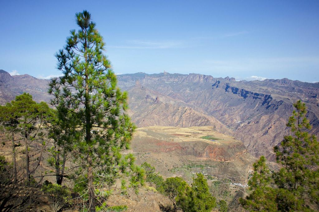 Vista de la Caldera de Tejeda y la Mesa de Acusa